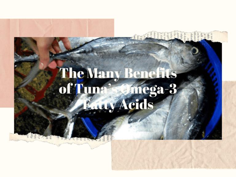 Benefits of Tuna Omega 3