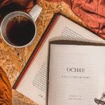 Book review of Ochre by Shristi Sainani